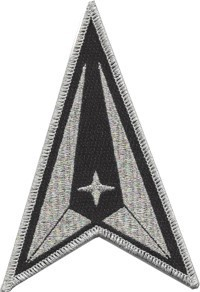 Space Force Delta patch